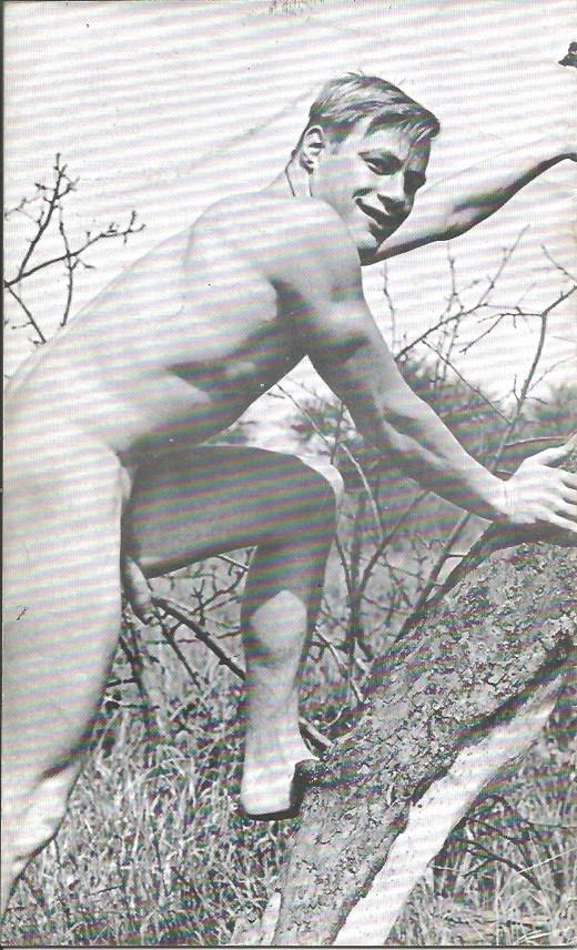 HAWK (Photographic Volume) No.2 - 1977