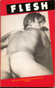 FLESH: True Homosexual Experiences from S.T.H. Writers - Volume 2