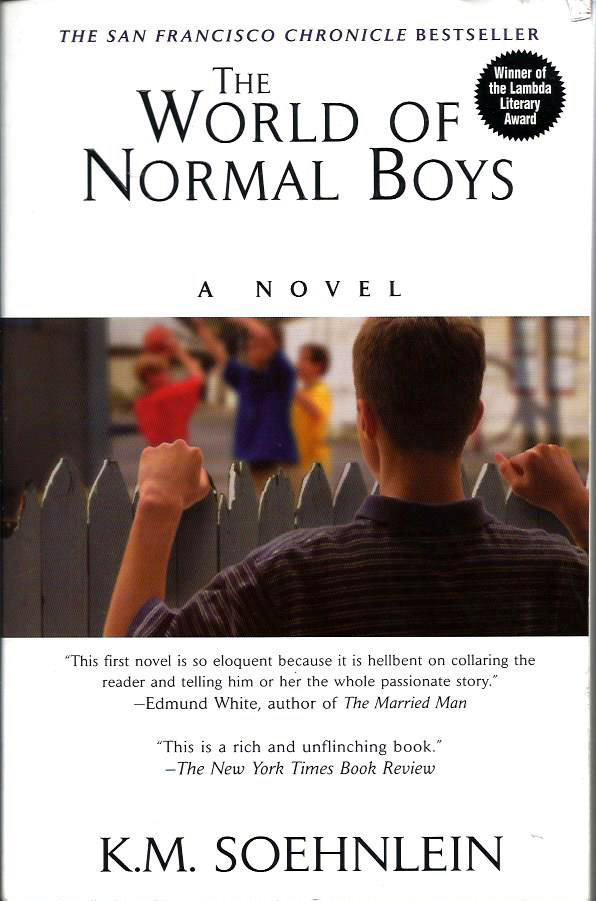 The World of Normal Boys - by K.M. Soehnlein
