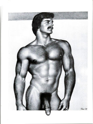 Tom of Finland - Hung and Hairy - Tom 79 - Print 11.5x9.25""