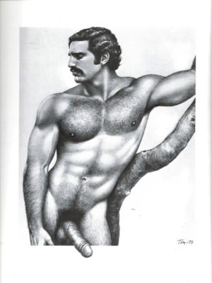Tom of Finland - Dark, Hung and Hairy - Tom 79 - Print 11.5x9.25""