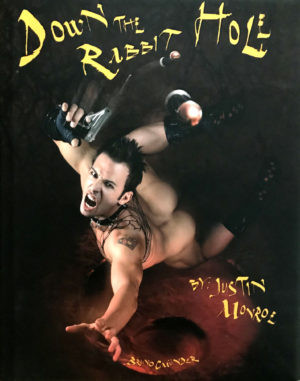 DOWN THE RABBIT HOLE – 2008 Hardcover by Justin Monroe
