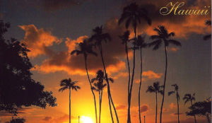HAWAII, FLORIDA - Set of 4 Vintage Postcards
