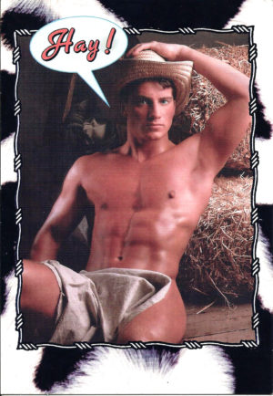 HAY GUY NUDE - Greeting Card
