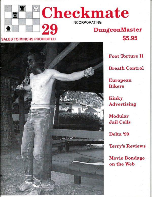 CHECKMATE 29 Gay Magazine Incorporating - Dungeon Master - November 1999