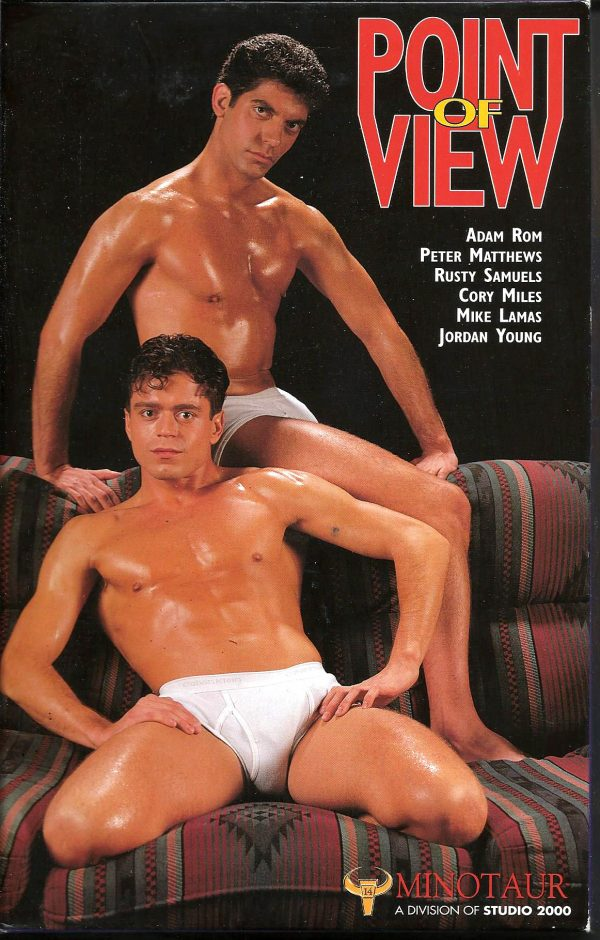 Vintage VHS Tape: POINT OF VIEW